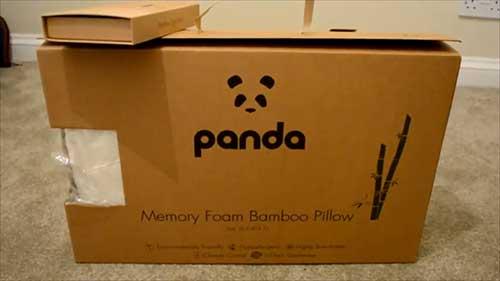Panda Pillow In Box