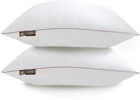 Makimoo MP2 Super Soft Queen Size Bamboo Fiber Pillow 2 Pack